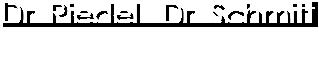 Dr. Riedel  Dr. Schmitt